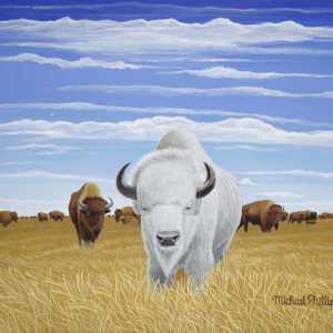 """Where the Buffalo Roam, No More."" - Artist Michael Phillips"